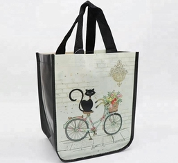 China Durable PP Non Woven Bags Silk Screen Printing Foldable With High Bearing Weight 12kg supplier