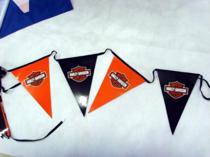Polyester Bunting Triangle Pennant Banner Small Size Installed At Heavy Duty Rope