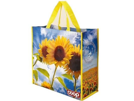 Simple Design PP Non Woven Shopping Bags , Laminated Non Woven Fabric Carry Bag